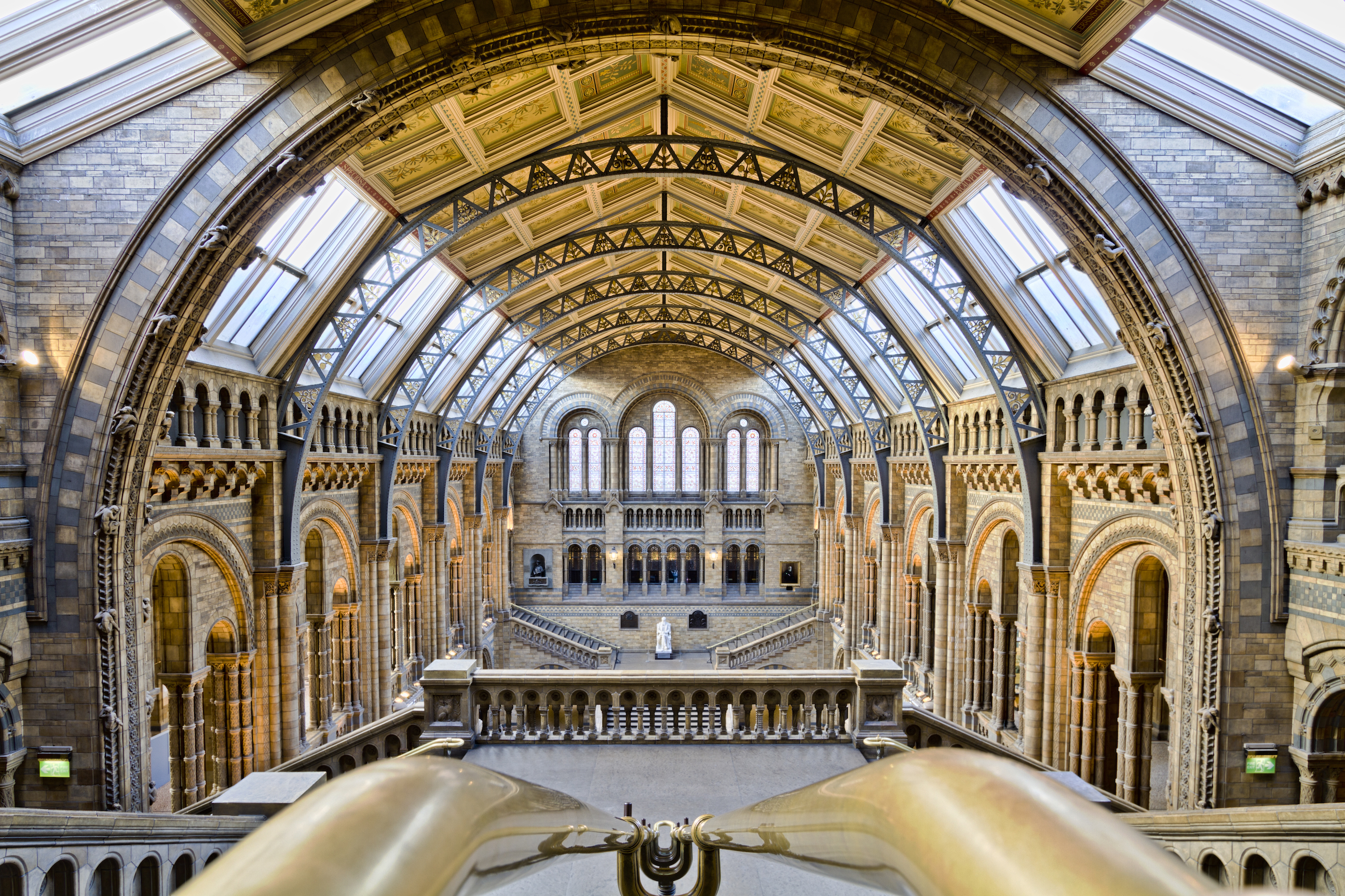 Natural History Museum: 'We hope people will discover new species with our open data'